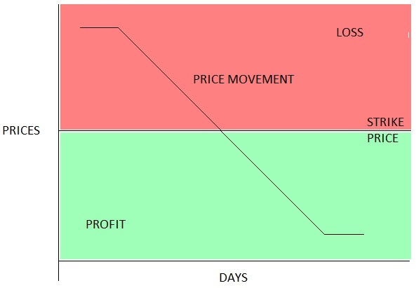 Put Options Pay Off Diagram