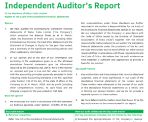 Annual Report - Auditor's Report