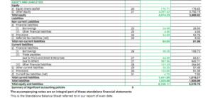 Balance Sheet Liability Side